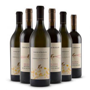 Box 6 bottiglie - Refosco dal Peduncolo Rosso e Ribolla Gialla DOC - Colli Orientali