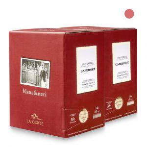 2 Bag in Box Cabernet Franc Igt Venezia Giulia 5lt - Pitars