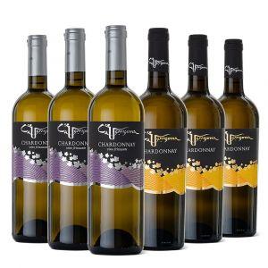 Mista Chardonnay – 6 bt – Ca' Venzona
