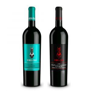 Confezione 2 bottiglie Valpolicella Ripasso e Lugana – Scuderia Italia