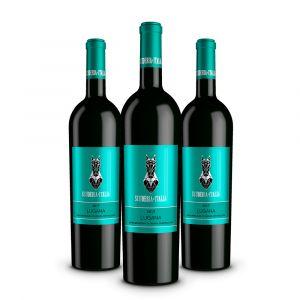 Confezione 3 bottiglie Lugana Doc – Scuderia Italia