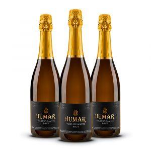 Confezione 3 Bottiglie Brut Spumante – Humar