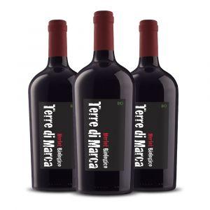 Confezione 3 Bottiglie Merlot – Terre di marca