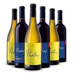 Confezione 6 Chardonnay e Schiava Linea Puntay – Erste Neue