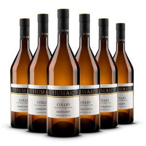Confezione 6 Bottiglie Collio Bianchi – Humar