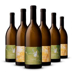Confezione 6 bottiglie Cru Bianchi – Rottensteiner