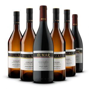 Confezione 6 Bottiglie Pinot – Humar