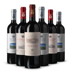 Confezione 6 bottiglie Selezione Degustazione - Ornellaia