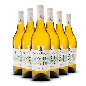 Confezione 6 Bottiglie Somtium Linea Speciale - I Feudi di Romans