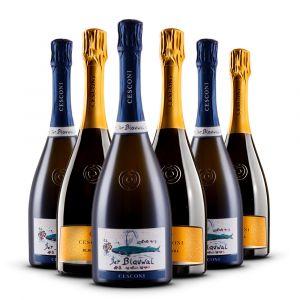 Confezione 6 Bottiglie Spumanti - Cesconi