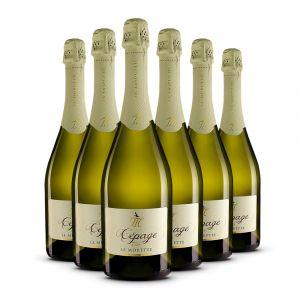 Confezione 6 bottiglie Cépage Spumante Brut - Le Morette