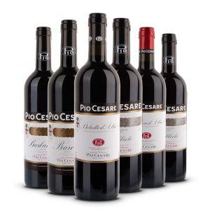 Confezione 6 bottiglie Degustazione Rossi Piemontesi - Pio Cesare