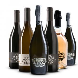 Confezione 6 Bottiglie Il Team - Molmenti & Celot