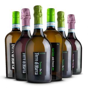 Confezione 6 Bottiglie Selezione - Terre di Marca