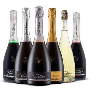 Confezione 6 Bottiglie Degustazione Conegliano Valdobbiadene DOCG - BiancaVigna