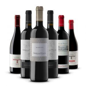 Confezione 6 vini I Merlot - Ornella Molon