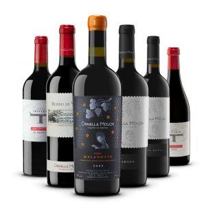 Confezione 6 vini Rossi Selezione - Ornella Molon