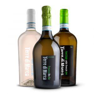 Confezione 3 Bottiglie Selezione - Terre di Marca
