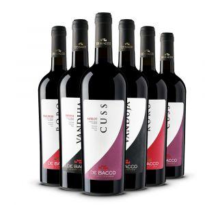 Confezione 6 Bottiglie Selezione Rossi - De Bacco