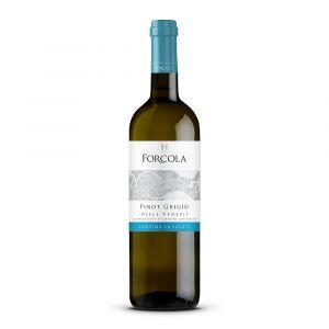 Pinot Grigio DOC delle Venezie Linea Forcola – La Salute