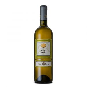 Pinot Grigio Doc delle Venezie - Carrer Vini
