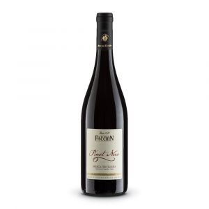 Pinot Nero Igt – Antonio Facchin