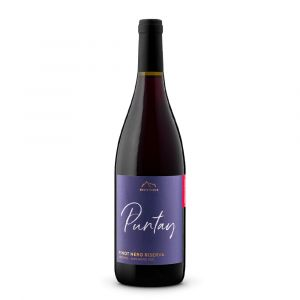 Pinot Nero Riserva Alto Adige Doc Linea Puntay – Erste Neue