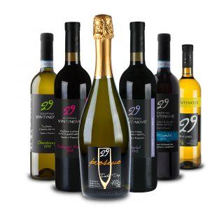 Confezione 6 bottiglie Assaggio – Vintinove
