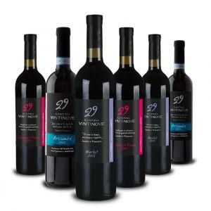 Confezione 6 bottiglie Merlot DOC Cabernet DOC Arcumbé DOC – Vintinove