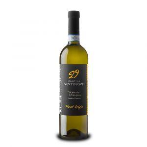 Pinot Grigio Doc – Vintinove