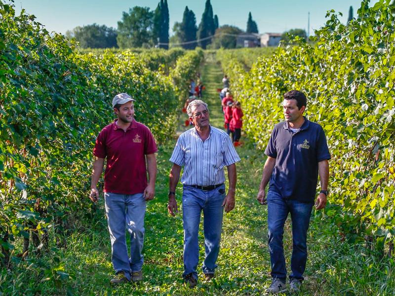 L'Azienda Agricola Le Morette – Valerio Zenato è oggi una delle realtà più dinamiche della zona di produzione del Lugana DOC. Ha sede a San Benedetto di Lugana, nella sottile fascia che separa la sponda meridionale del Lago di Garda dal Laghetto del Frassino, importante sito naturalistico e riserva naturale.