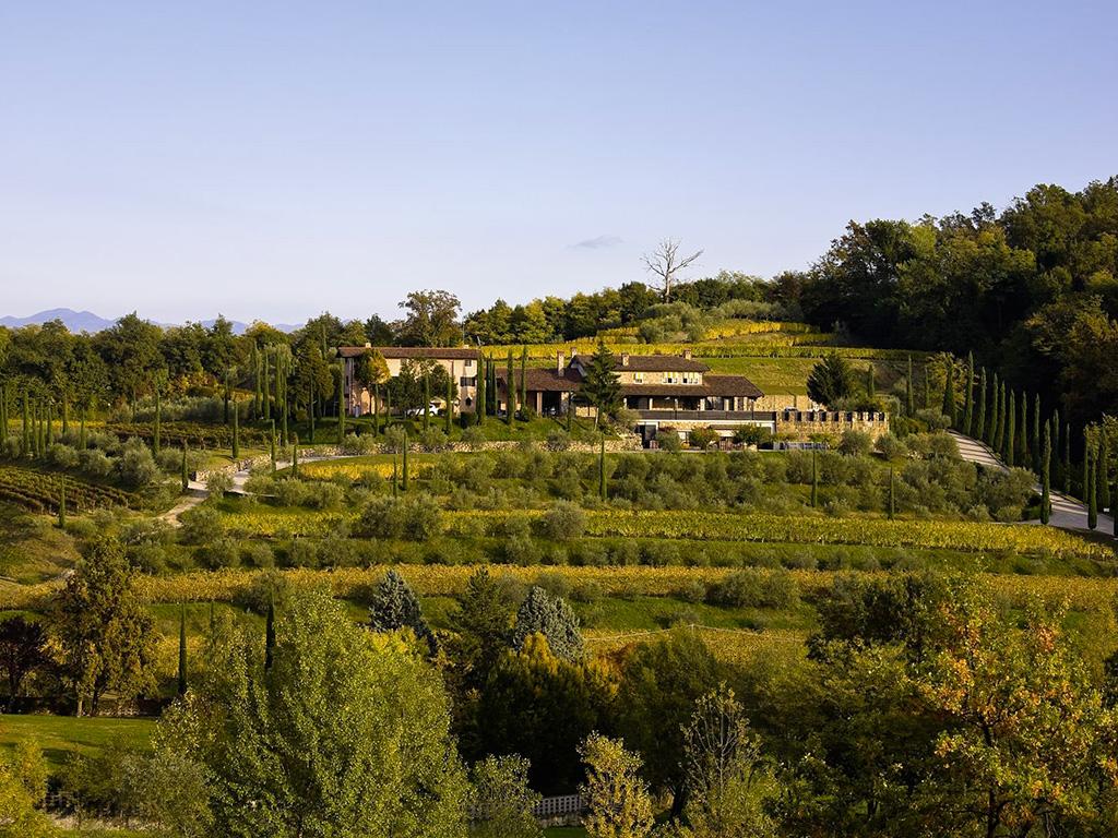 Siamo in Friuli, nel nord-est dell'Italia, dove le pieghe dei Colli Orientali rivelano piccole e grandi aziende agricole.